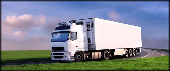 Η εταιρεία - Λευκό Φορτηγό